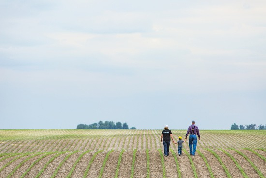 grower_family_in_young_corn_field